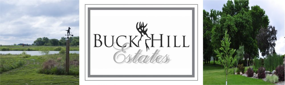 Buck Hill Estates